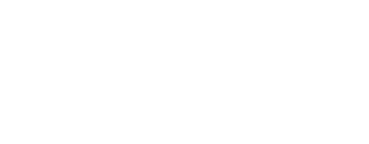 The Netsys Group